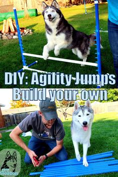 Build your Own Agility Jumps!  Super easy, step by step, DIY, including a video for even more help!  Have fun with your dog in your own backyard!