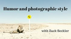 How Zack Seckler Uses Humor and Style in Photography