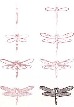how to draw a dragonfly #journal #drawing: