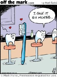 Dental Humor for PBHS Dental Social Media Campaigns