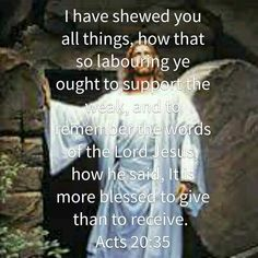 I have shewed you all things...