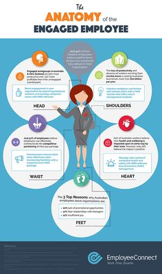 Infographic - The Anatomy of the Engaged Employee