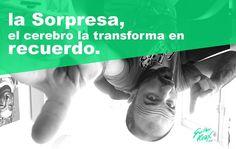 La Sorpresa... #sorpresa #surprise #neuromarkering #cerebro #brain  #memories #recuerdos #bocaabajo #down #transform #buda #working #atwork #office #home