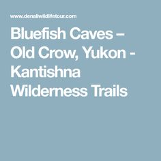 Bluefish Caves – Old Crow, Yukon - Kantishna Wilderness Trails