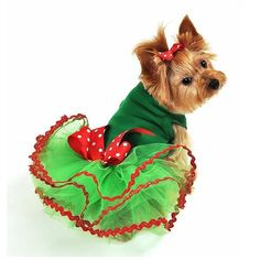 A festive green tutu dress accented with red and silver trim and a pretty red and white polka dot bow perfect for the Christmas Holiday season.