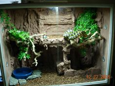 Reptile Tanks Terrarium - Reptile Tanks For Sale Terrarium Diy, Snake Terrarium, Reptile Room, Reptile Cage, Reptile Tanks, Red Ear Turtle, Snake Cages, Snake Enclosure, Classroom Pets