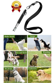 XQFI Dog Whistles, Professional Ultrasonic Dog Training Whistle to Stop Barking,Dog Obedience Tricks Adjustable High Pitch Ultra-Sonic Sound Tool with Free Premium Quality Lanyard Strap Dog Training Tools, Best Dog Training, High Pitch, Dog Whistle, Shock Collar, Whistles, Small Dogs, Best Dogs, Collars