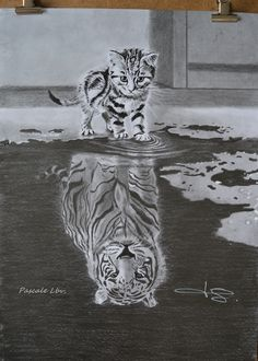 167 - Little Feline will become Big! - Drawings according to my wishes, Pascale Lbv, - Pinehouse - 167 – Little Feline will become Big! – Drawings according to my wishes, Pascale Lbv, – - Pencil Drawings Of Animals, Animal Sketches, Art Drawings Sketches, Cool Drawings, Drawings Of Tigers, Realistic Drawings Of Animals, Drawing Animals, Tiger Drawing, 3d Art Drawing