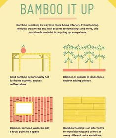 Bamboo is the newest home material trend!  #sandiegorealestate #sandiegorealtor #realestateagentsandiego #realestate #bamboo - posted by Nicole Eastman Sasson https://www.instagram.com/nicoleeastmanrealty - See more San Diego Real Estate photos from San Diego Realtors at https://NewHomes