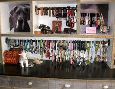 Maybe stack & glue boxes like shown, paint inside white, glue photos to back. Mount/glue rods to inside of select boxes to hang dog collars.