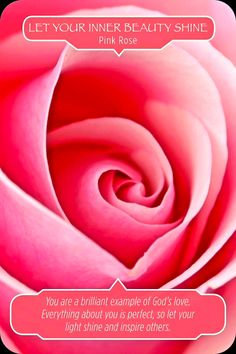 Pink Rose ~ Let Your Inner Beauty Shine, from the Flower Therapy Oracle Card deck, by Doreen Virtue Ph.D and Robert Reeves