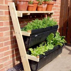 Ladder for small garden spaces
