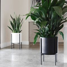 Large Mid-century Modern Cylinder Planter with Metal Stand