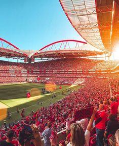 Benfica Wallpaper, Football Memes, Big Love, Wall Collage, Grande, Iphone Wallpaper, Soccer, River, Stadium Of Light