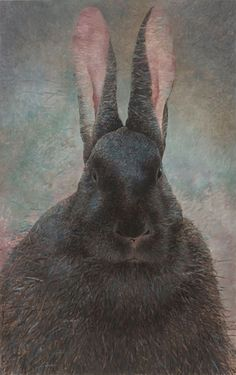 Shao Fan aka 邵帆的 aka Yu Han aka 昱寒 (Chinese, b. Beijing, China) - Rabbit Portrait (Wuxu 2018 Paintings: Oil on Canvas Art Basel Contemporary Artists, Modern Art, Oil On Canvas, Canvas Art, The Artist, Artist Biography, Famous Art, Artist Profile, Artist Gallery