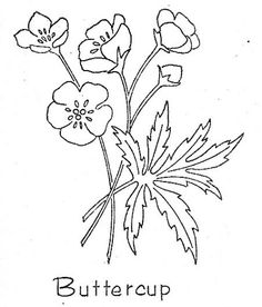 Buttercup embroidery pattern