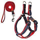 Kootek Dog Leash Harness No Pull & Adjustable Dog Leash Collar for Small and Medium Dog, Comfortable for Daily Training Walking Running
