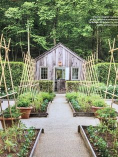 Vegetable Garden Layout: 7 Best Design Secrets!