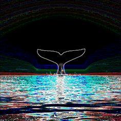 고래의 꿈...비전 희망 소망 그리고 완성