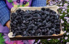 Jak správně usušit a uskladnit švestky? ........Dejte do sklenic a zavařit. Jen ovoce, žádná voda, nasucho. 20 minut na 80 stupňů, a vydrží vám roky. Blueberry, Pesto, Food And Drink, Canning, Fruit, Drinks, Syrup, Drinking, Berry