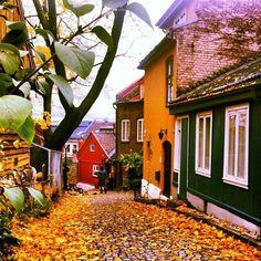 Herbstliche Aufnahme der Straße Damstredet in Oslo, Norwegen.