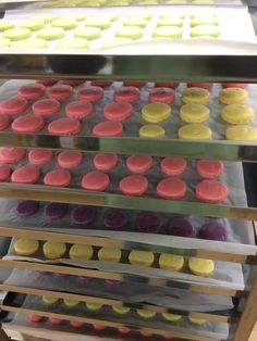 Macarons in the oven!