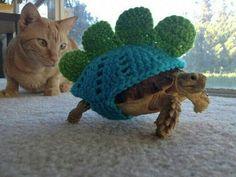 jasje voor schildpad