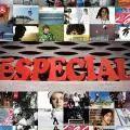 eS Shoes - eSpecial (2007) Mens Skate Shoes, Company Logo
