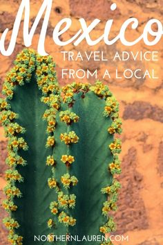 Everything NOT to do in Mexico, Mexico travel advice written by a local, Local Mexico travel advice, Mexico travel tips.
