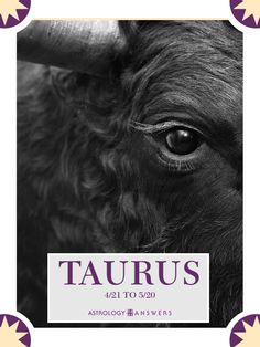 Practicality, Artistic a bit crazy, Stability, Trustworthiness, Generosity, Humanity and Loyalty. Taurus <3 Click the picture to find out more about Taurus!