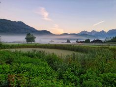 Great pic from this morning at the golf course Kitzbühel-Schwarsee-Reith Golf Hotel, Golf Holidays, Great Pic, Golf Courses, Mountains, Travel, Tourism, Real Estates, Alps
