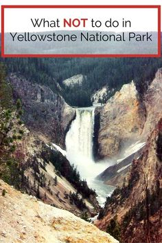 Don't be a touron: What NOT to do in Yellowstone National Park Safety information for planning a trip to Yellowstone National Park. Tips on how not to be a touron & what NOT to do in Yellowstone. Wyoming Vacation, Yellowstone Vacation, Yellowstone Camping, Vacation Trips, Family Vacations, Vacation Ideas, West Yellowstone Montana, Yosemite Vacation, Family Travel