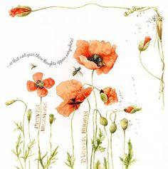 Nature Sketch, Nature Drawing, Illustration Blume, Botanical Illustration, Watercolor Flowers, Watercolor Art, Decoupage, Marjolein Bastin, Nature Artists