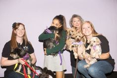 Pop star Ariana Grande, center, got the chance to meet eight dogs from ARF Tulsa, the Animal Rescue Foundation of Tulsa, before her Wednesday night concert at the BOK Center. The singer ended up adopting a Yorkie named Strauss on the spot. Photo provided