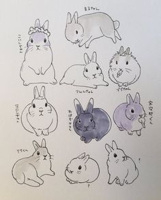 drawings of animals Cute Animal Drawings, Animal Sketches, Cute Drawings, Drawing Sketches, Bunny Drawing, Bunny Art, Bunny Tattoos, Rabbit Art, Cute Illustration