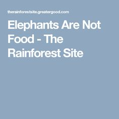 Elephants Are Not Food - The Rainforest Site
