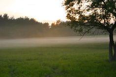 Szubalpin klima az Őrségben-orseg-szallas.hu