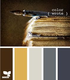 This is what the color palette looks like when you add in dark wood furniture! Still chic!