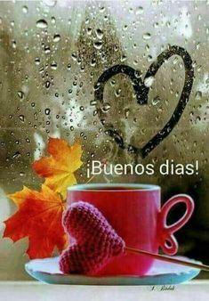 Buenos días Good Morning Funny, Good Morning Greetings, Good Morning Good Night, Good Day Quotes, Good Morning Quotes, Mary Bell, Little Prince Quotes, Spanish Greetings, Love Post