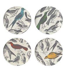 Thomas Paul Ornithology Dinner Plate