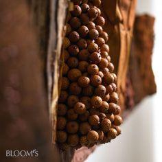 Palmfrüchte, Pinienrinde und Magnolienblätter bedecken die wechselnd gestalteten Halbkegel.