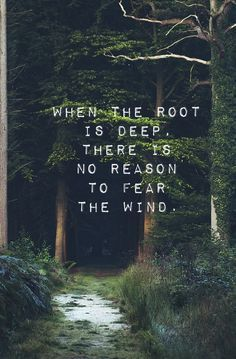 """""""When the root is deep, there is no reason to fear the wind."""" Typo by ES"""