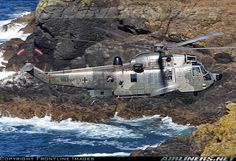 Westland WS-61 Sea King Mk41 aircraft picture