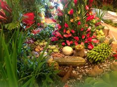Eggleston and Giraudel flower show. Commonwealth of Dominica