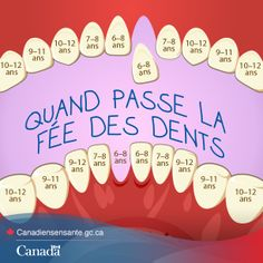 Prévoyez l'arrivée de la fée des dents : http://www.hc-sc.gc.ca/hl-vs/oral-bucco/care-soin/child-enfant-fra.php?utm_source=Pinterest_HCdns&utm_medium=social&utm_content=Dec15_Teeth_FR&utm_campaign=social_media_13