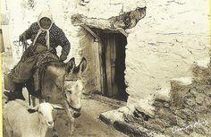 Riding a Donkey - George Meis; taken from a souvenir calendar of Crete; Info available on calendar here: http://www.cretanvista.gr/goodreading5.htm