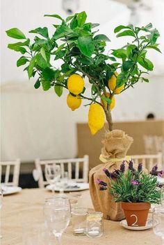 To save your costs we collected beautiful and affordable centerpieces that don't involve flowers. See our gallery of non-floral wedding centerpieces! Unique Centerpieces, Wedding Table Centerpieces, Flower Centerpieces, Wedding Decorations, Table Decorations, Wedding Ideas, Centrepieces, Wedding Blog, Destination Wedding