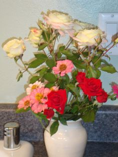 mini roses from my garden for kitchen