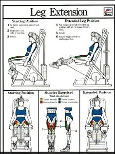 Then there's the Leg Extension machine