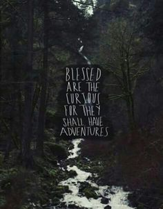 Blessed are the curious for they shall have adventures.